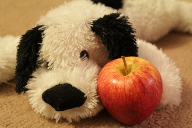 Can Dogs Eat Crab Apples
