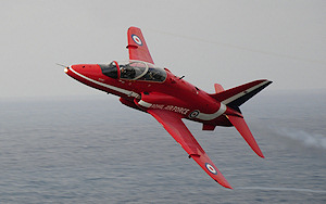 red plane attracts birds